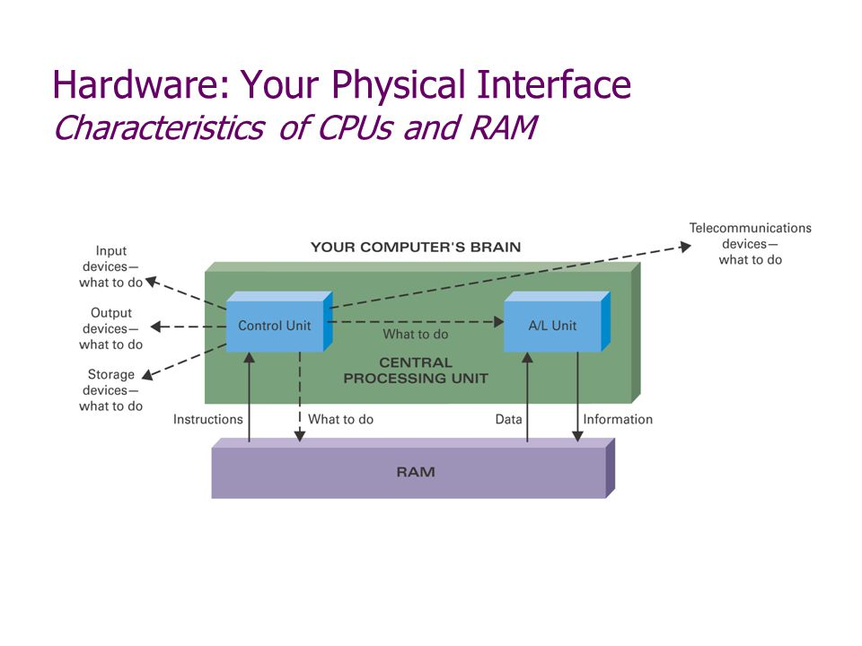 Hardware: Your Physical Interface Characteristics of CPUs and RAM