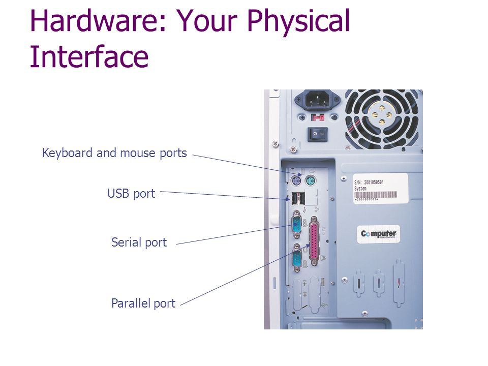 Hardware: Your Physical Interface Parallel port Serial port USB port Keyboard and mouse ports