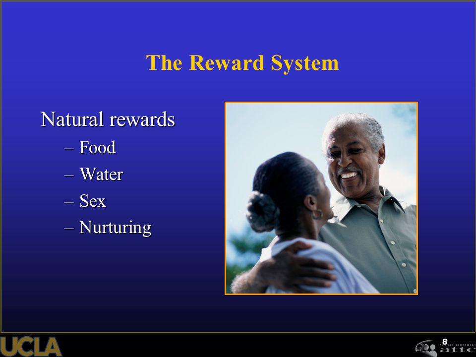 8 The Reward System Natural rewards –Food –Water –Sex –Nurturing