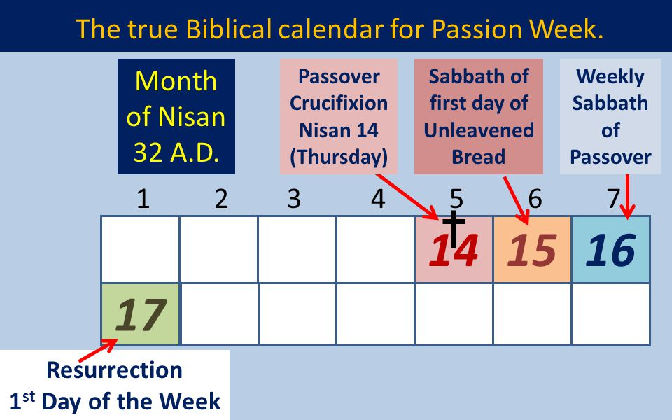 The true Biblical calendar for Passion Week. 17 141516 1234567 Resurrection 1 st Day of the Week Passover Crucifixion Nisan 14 (Thursday) Sabbath of f
