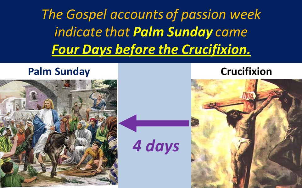The Gospel accounts of passion week indicate that Palm Sunday came Four Days before the Crucifixion. Palm SundayCrucifixion 4 days