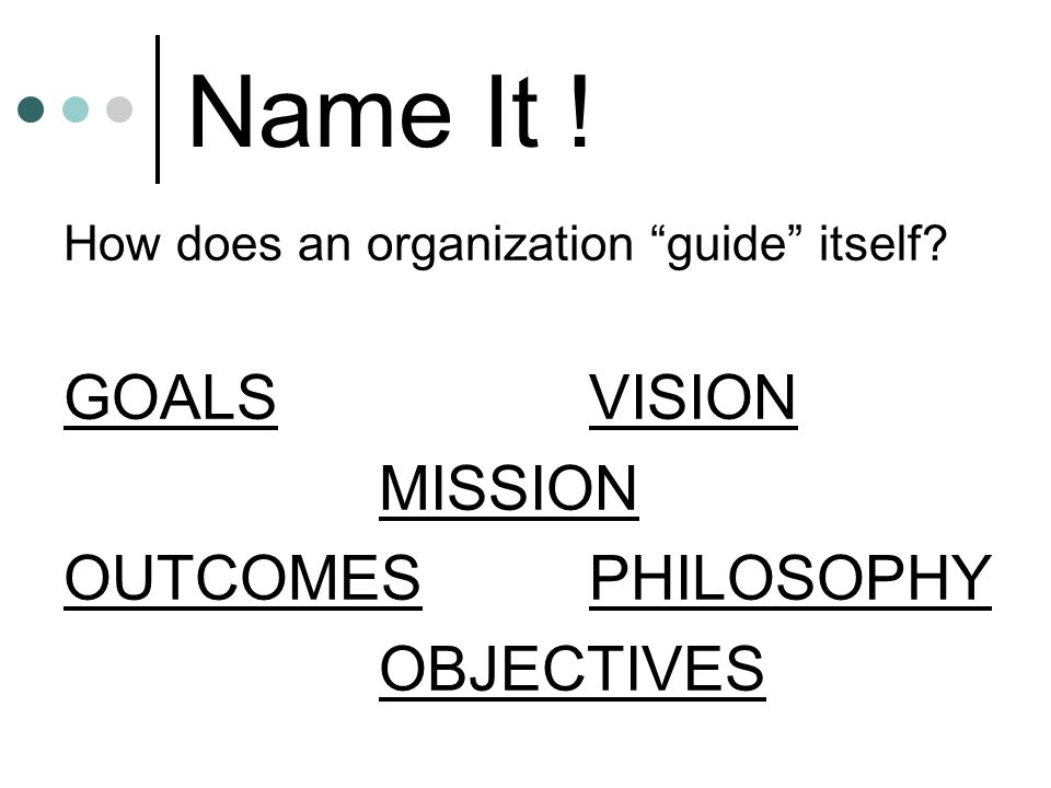 Name It .How does an organization guide itself.