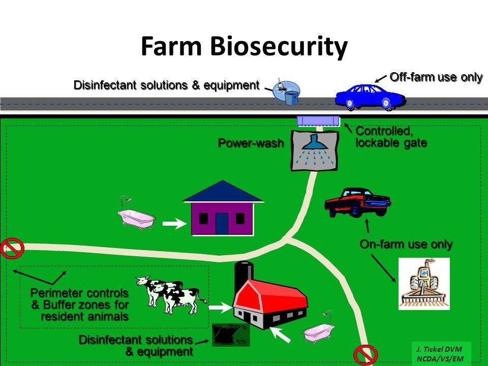 Farm Biosecurity Off-farm use only Power-wash Disinfectant solutions & equipment On-farm use only Disinfectant solutions & equipment Controlled, lockable gate Perimeter controls & Buffer zones for resident animals J.