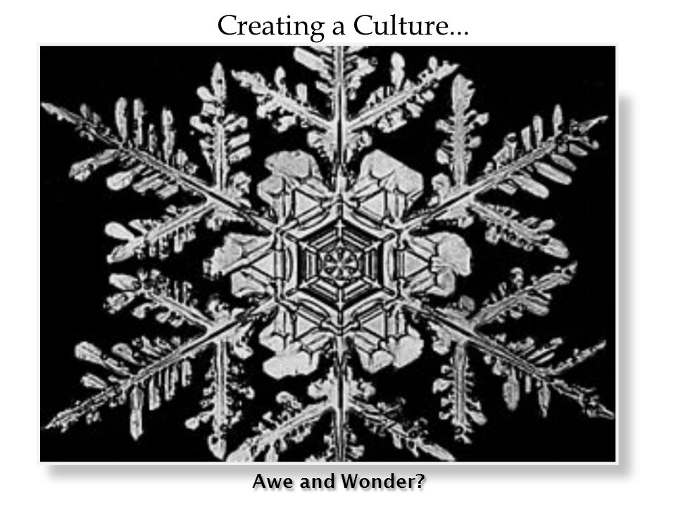 Awe and Wonder Creating a Culture...