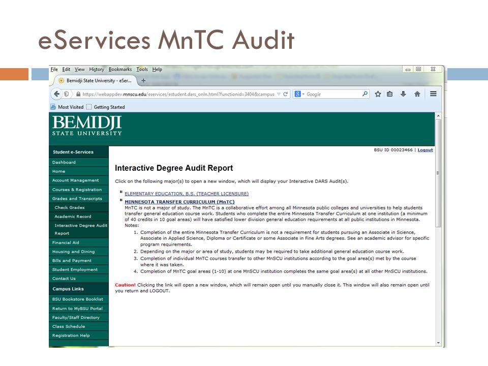 eServices MnTC Audit