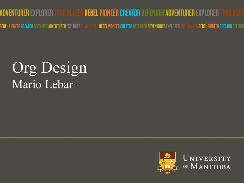 21 Org Design Mario Lebar