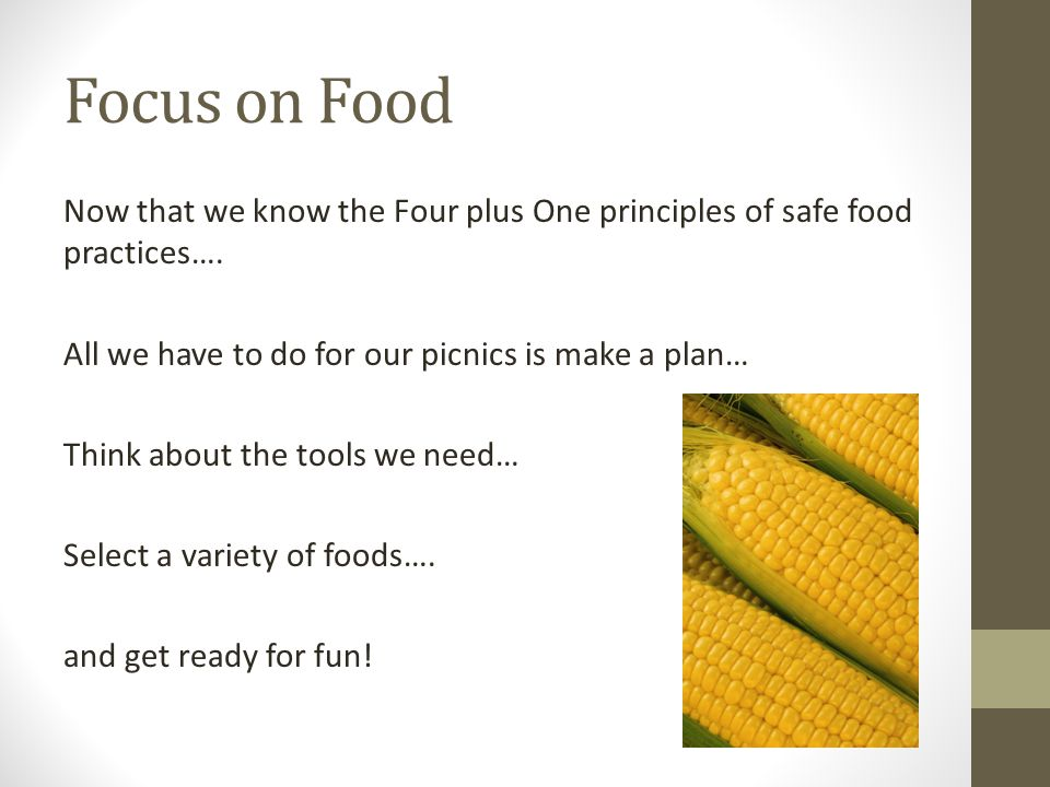 Focus on Food Now that we know the Four plus One principles of safe food practices…. All we have to do for our picnics is make a plan… Think about the
