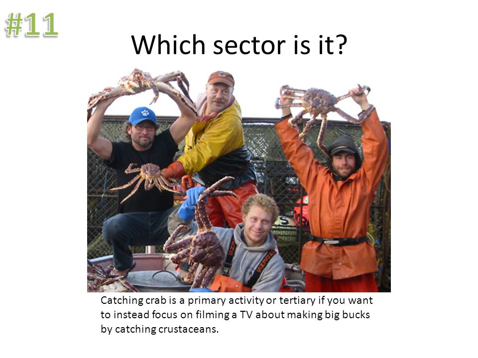 Which sector is it? Catching crab is a primary activity or tertiary if you want to instead focus on filming a TV about making big bucks by catching cr