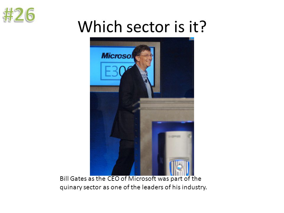 Which sector is it? Bill Gates as the CEO of Microsoft was part of the quinary sector as one of the leaders of his industry.