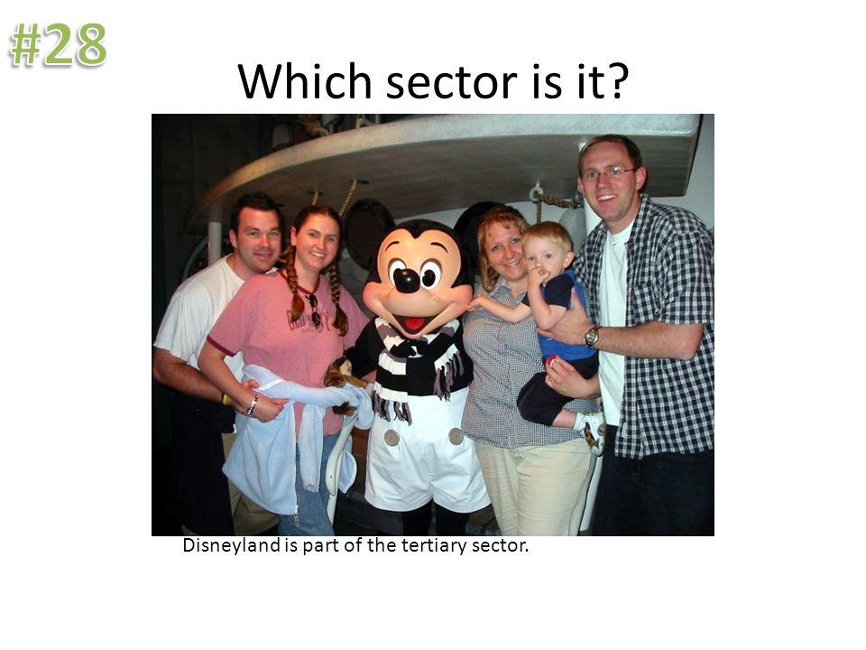 Which sector is it? Disneyland is part of the tertiary sector.