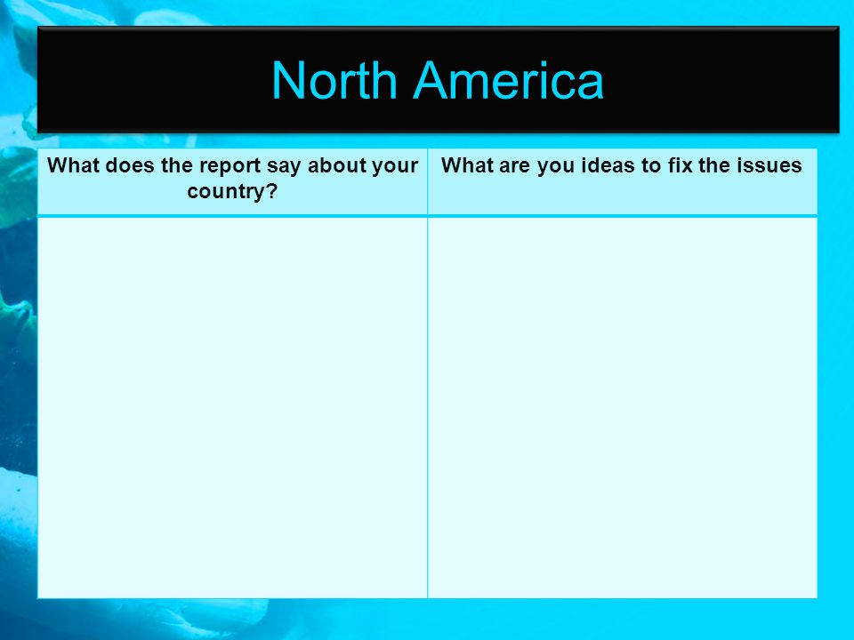North America What does the report say about your country? What are you ideas to fix the issues