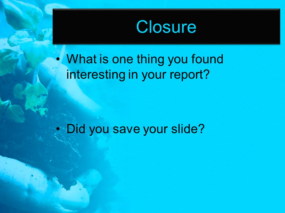 Closure What is one thing you found interesting in your report Did you save your slide