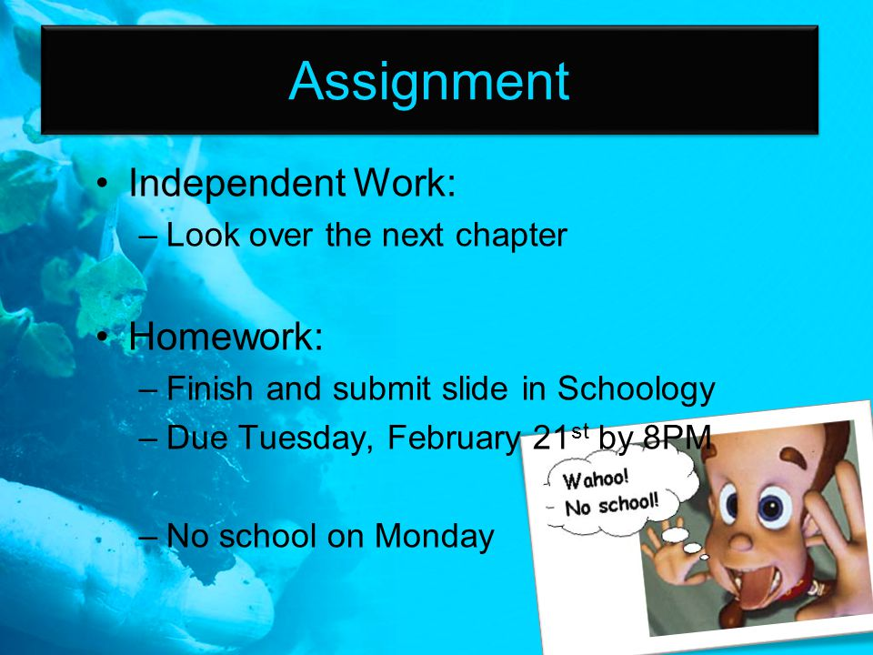 Assignment Independent Work: –Look over the next chapter Homework: –Finish and submit slide in Schoology –Due Tuesday, February 21 st by 8PM –No schoo