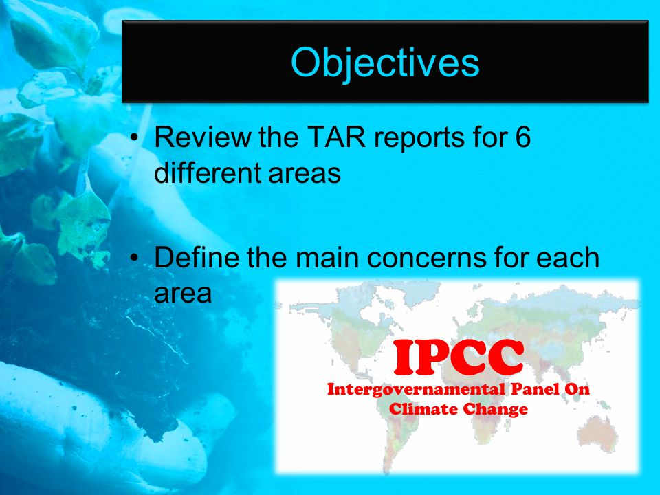 Objectives Review the TAR reports for 6 different areas Define the main concerns for each area