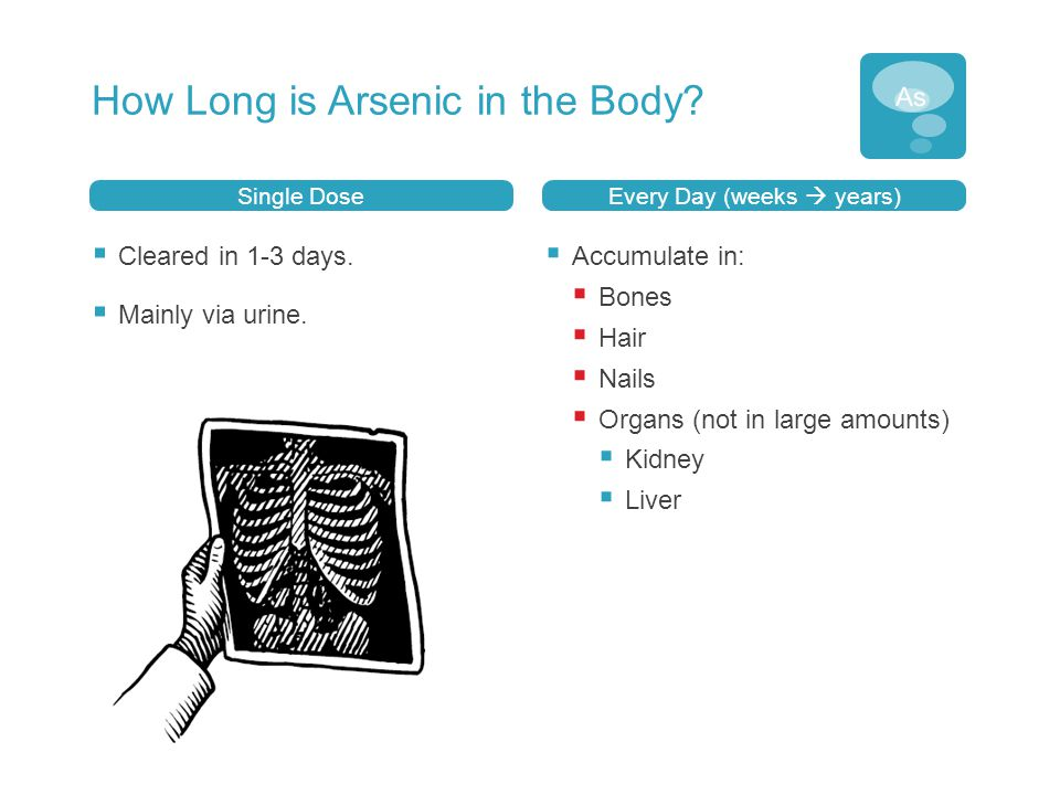 How Long is Arsenic in the Body? Single Dose  Cleared in 1-3 days.  Mainly via urine. Every Day (weeks  years)  Accumulate in:  Bones  Hair  Na