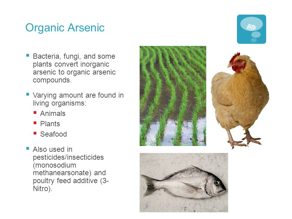 Organic Arsenic  Bacteria, fungi, and some plants convert inorganic arsenic to organic arsenic compounds.