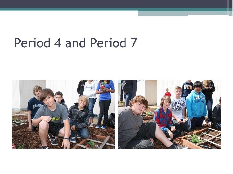 Period 4 and Period 7