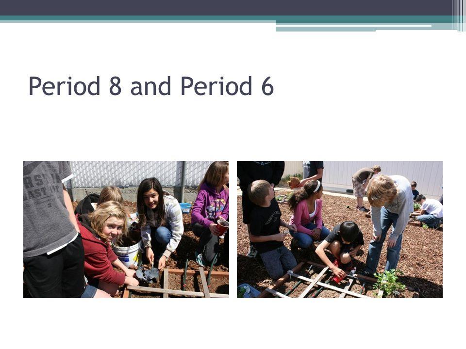 Period 8 and Period 6