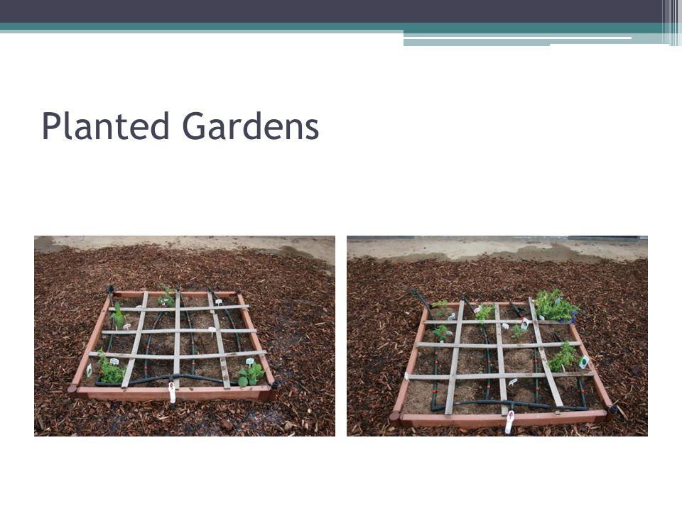 Planted Gardens