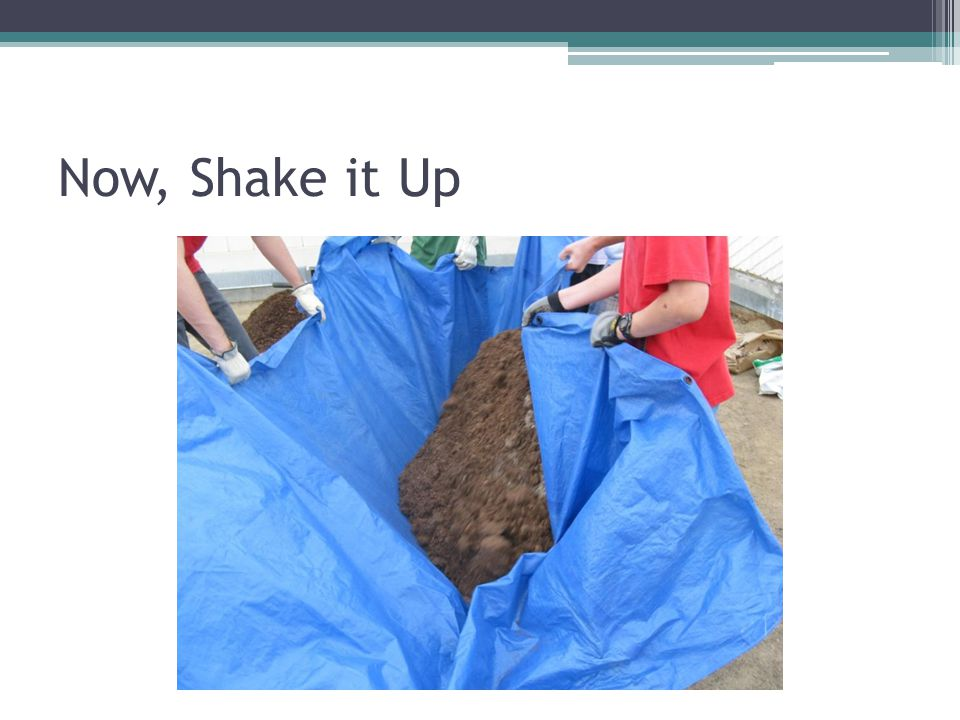 Now, Shake it Up