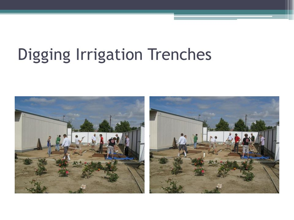 Digging Irrigation Trenches