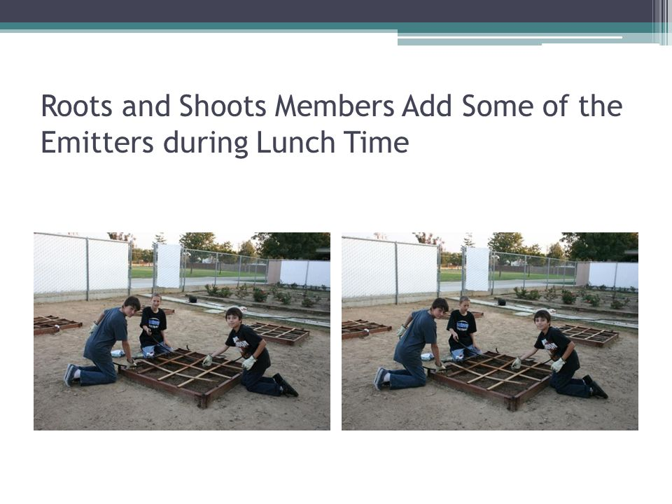 Roots and Shoots Members Add Some of the Emitters during Lunch Time