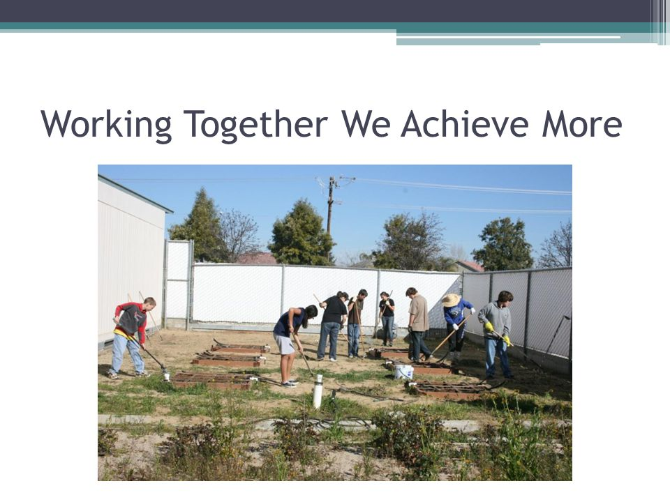 Working Together We Achieve More