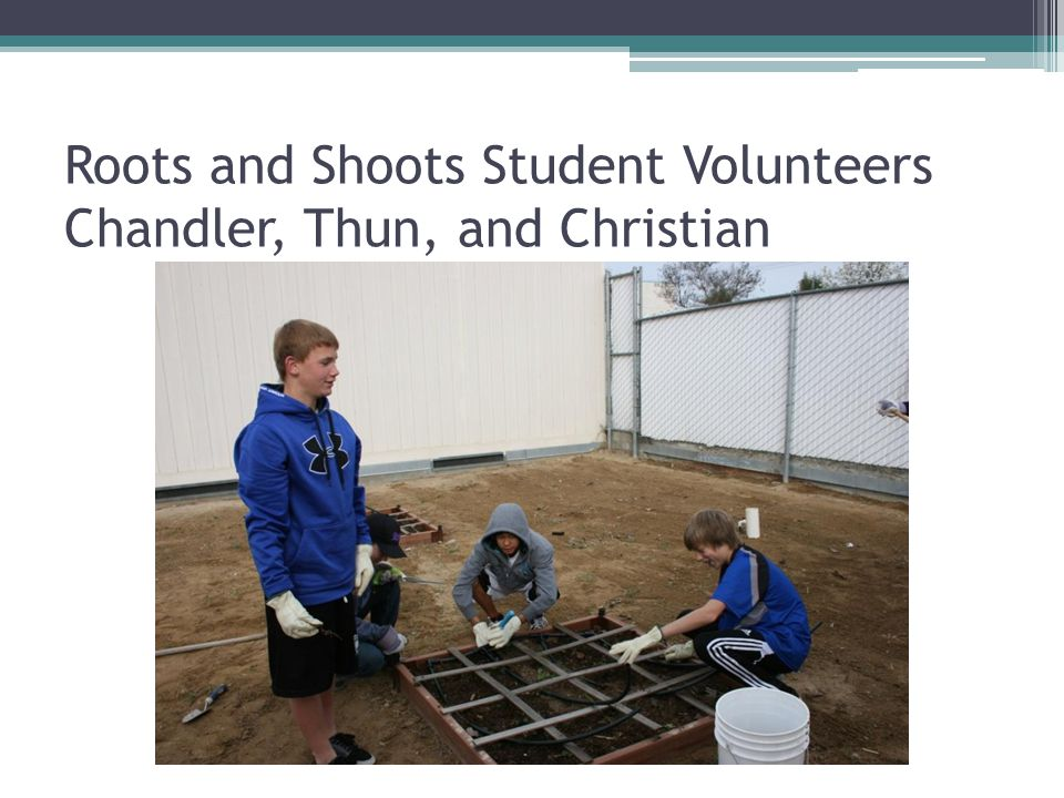 Roots and Shoots Student Volunteers Chandler, Thun, and Christian