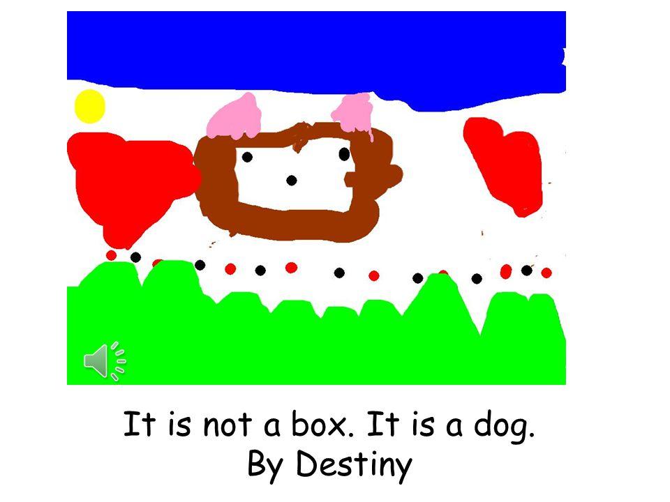 It is not a box. It is a race car. By Grace