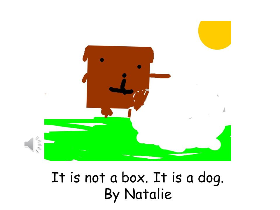 It is not a box. It is a dog. by Miley