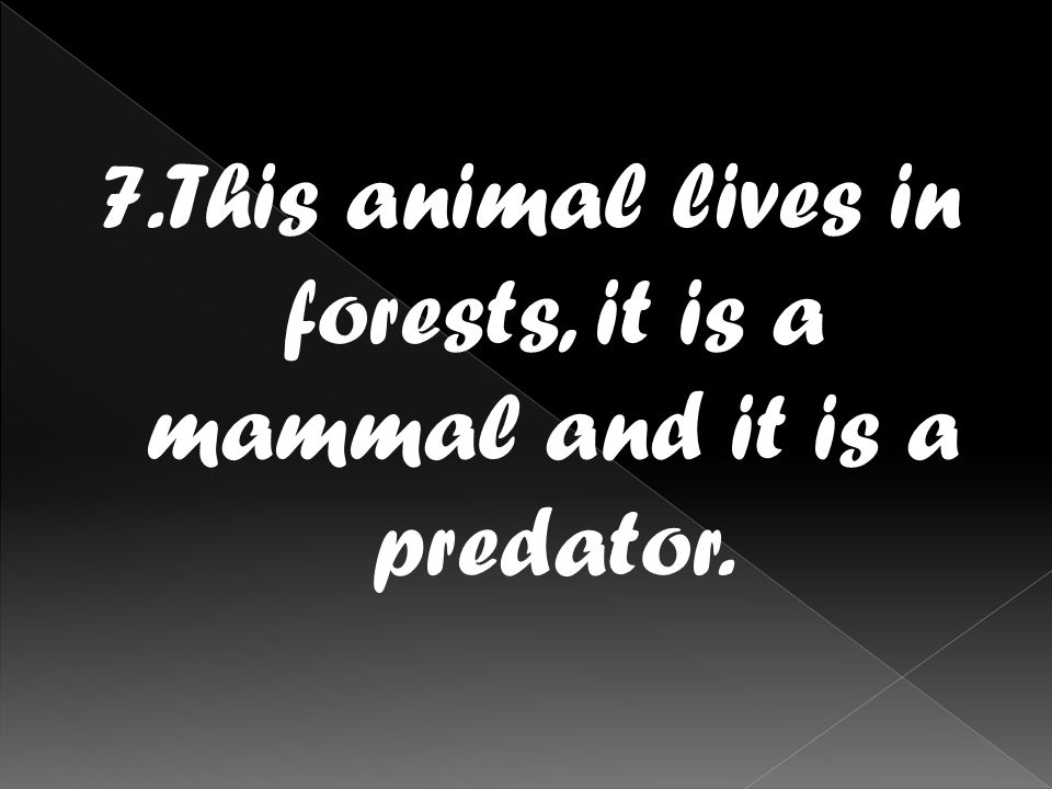7.This animal lives in forests, it is a mammal and it is a predator.