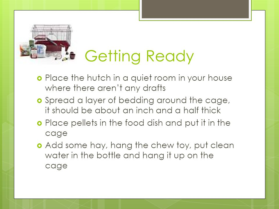 Getting Ready  Place the hutch in a quiet room in your house where there aren't any drafts  Spread a layer of bedding around the cage, it should be about an inch and a half thick  Place pellets in the food dish and put it in the cage  Add some hay, hang the chew toy, put clean water in the bottle and hang it up on the cage
