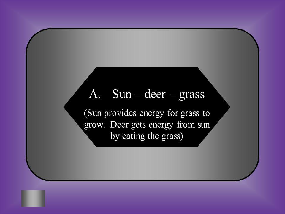 A:B: Sun – grass - deer Grass – sun - deer C:D: Deer – grass - sun None of these #7 Trace the path of sunlight from Sun to deer.