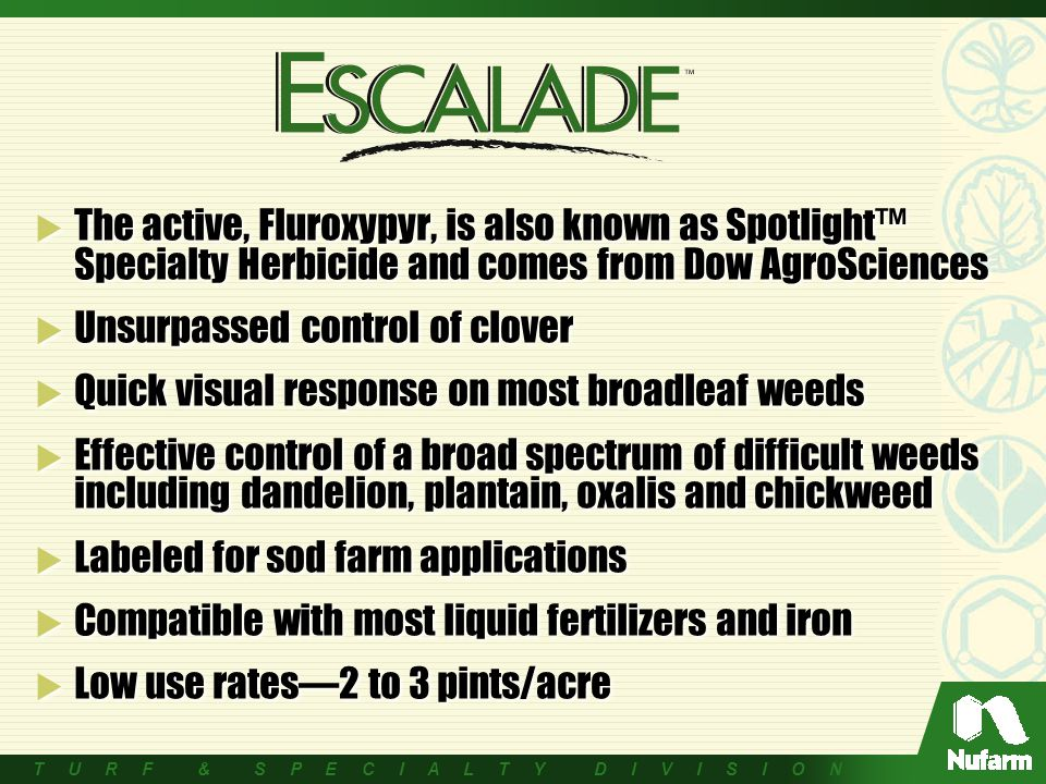 T U R F & S P E C I A L T Y D I V I S I O N  The active, Fluroxypyr, is also known as Spotlight™ Specialty Herbicide and comes from Dow AgroSciences  Unsurpassed control of clover  Quick visual response on most broadleaf weeds  Effective control of a broad spectrum of difficult weeds including dandelion, plantain, oxalis and chickweed  Labeled for sod farm applications  Compatible with most liquid fertilizers and iron  Low use rates—2 to 3 pints/acre  The active, Fluroxypyr, is also known as Spotlight™ Specialty Herbicide and comes from Dow AgroSciences  Unsurpassed control of clover  Quick visual response on most broadleaf weeds  Effective control of a broad spectrum of difficult weeds including dandelion, plantain, oxalis and chickweed  Labeled for sod farm applications  Compatible with most liquid fertilizers and iron  Low use rates—2 to 3 pints/acre