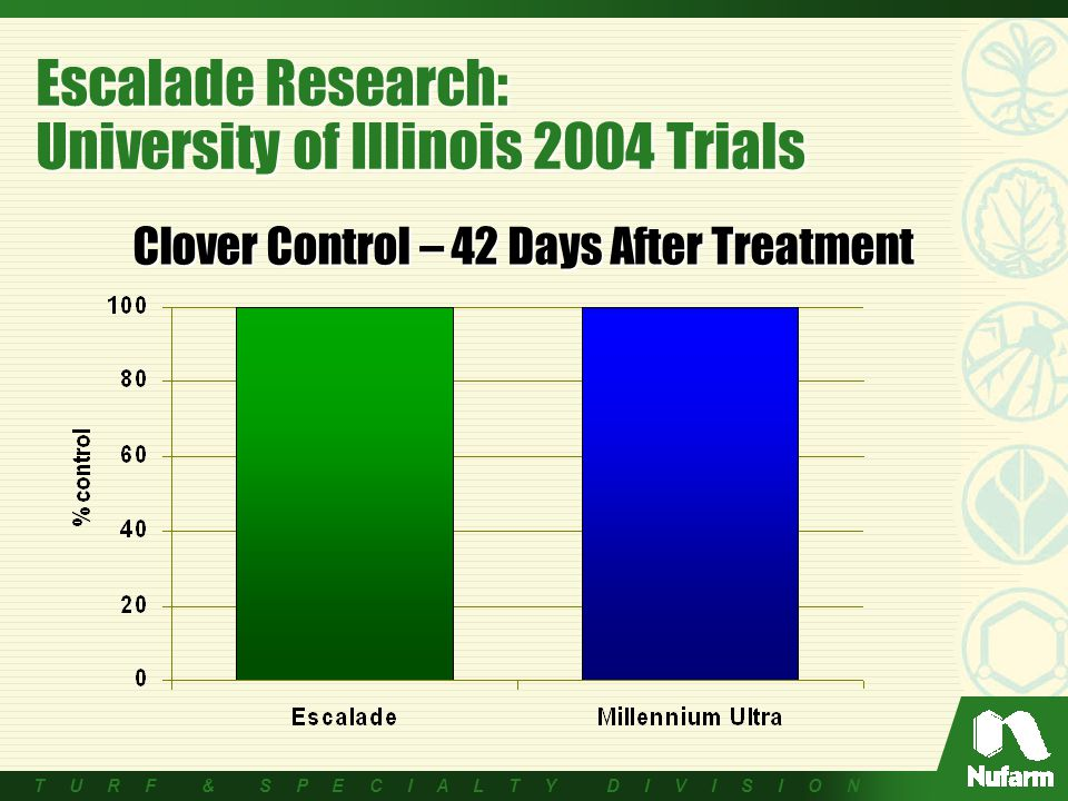 T U R F & S P E C I A L T Y D I V I S I O N Escalade Research: University of Illinois 2004 Trials Clover Control – 42 Days After Treatment