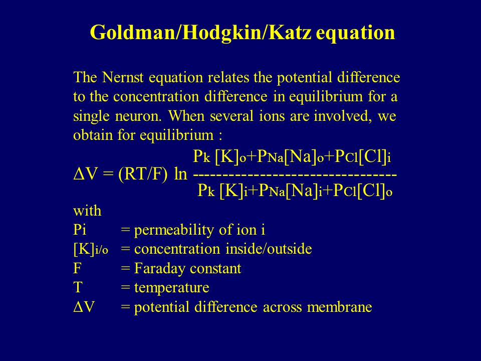 Goldman/Hodgkin/Katz equation The Nernst equation relates the potential difference to the concentration difference in equilibrium for a single neuron.