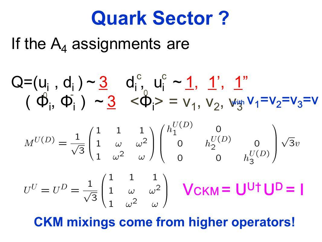 Quark Sector .