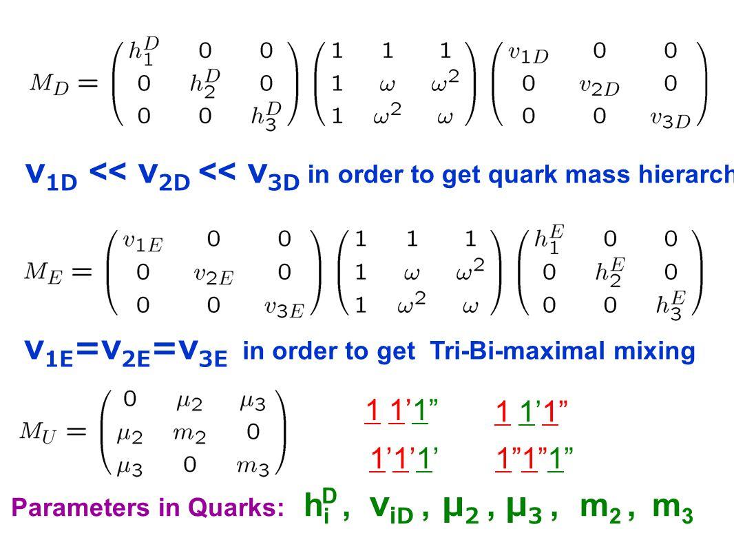 Parameters in Quarks: h i, v iD, μ 2, μ 3, m 2, m 3 v 1E =v 2E =v 3E in order to get Tri-Bi-maximal mixing v 1D << v 2D << v 3D in order to get quark mass hierarchy D 1 1'1 1 1'1 1 1'1 1 1'1 1'1'1'1'1'1'1 1 1 1 1 1