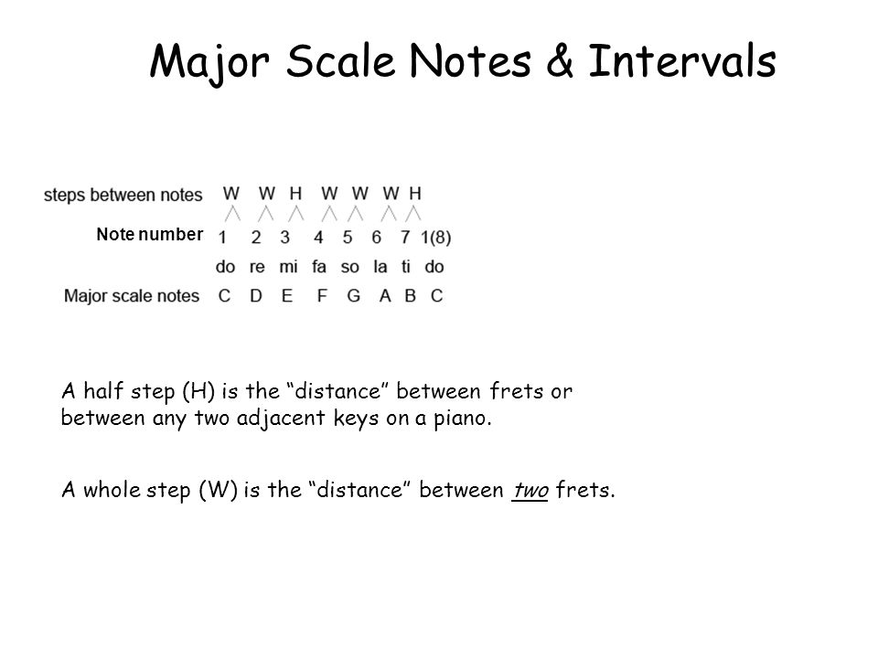Major Scale Notes & Intervals A half step (H) is the distance between frets or between any two adjacent keys on a piano.