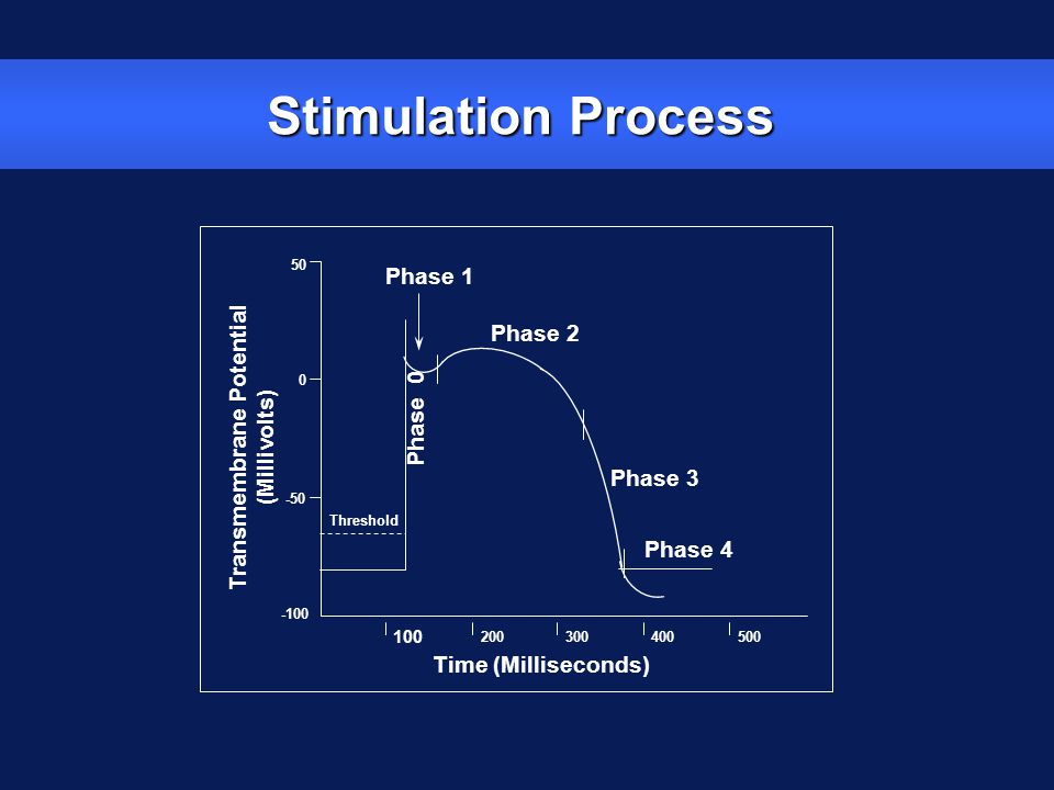 Stimulation Process Time (Milliseconds) 100 200300400500 Phase 2 Phase 1 Phase 3 Phase 4 Transmembrane Potential (Millivolts) -50 0 50 -100 Phase 0 Th
