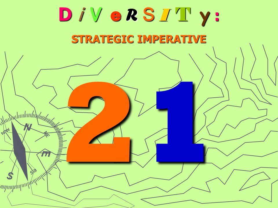 D i V e R S I T y : STRATEGIC IMPERATIVE 21212121