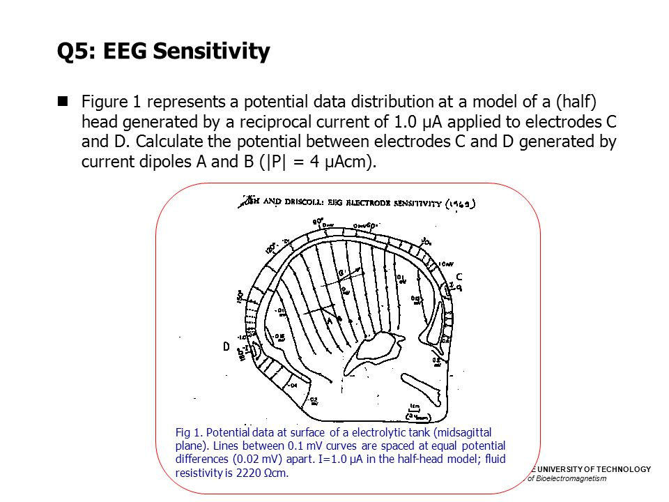 TAMPERE UNIVERSITY OF TECHNOLOGY Institute of Bioelectromagnetism Bioelectromagnetism Exercise 3 Q5: EEG Sensitivity Figure 1 represents a potential d