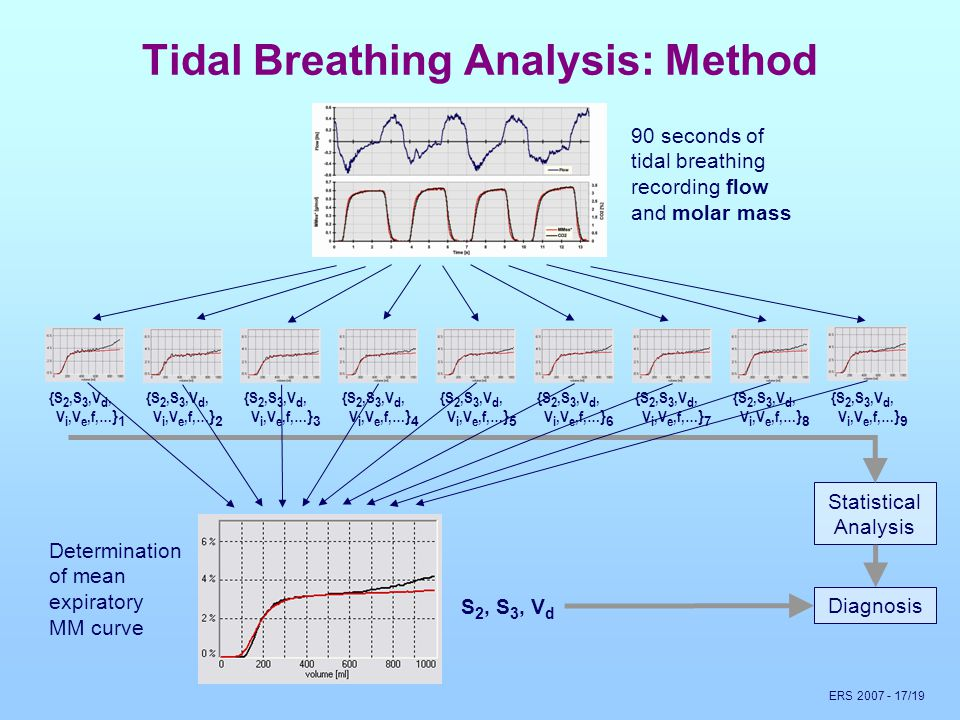 ERS 2007 - 17/19 Tidal Breathing Analysis: Method Statistical Analysis 90 seconds of tidal breathing recording flow and molar mass {S 2,S 3,V d, V i,V e,f,… } 1 {S 2,S 3,V d, V i,V e,f,… } 2 {S 2,S 3,V d, V i,V e,f,… } 3 {S 2,S 3,V d, V i,V e,f,… } 4 {S 2,S 3,V d, V i,V e,f,… } 5 {S 2,S 3,V d, V i,V e,f,… } 6 {S 2,S 3,V d, V i,V e,f,… } 7 {S 2,S 3,V d, V i,V e,f,… } 8 {S 2,S 3,V d, V i,V e,f,… } 9 Determination of mean expiratory MM curve S2, S3, VdS2, S3, Vd Diagnosis