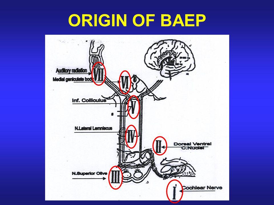 ORIGIN OF BAEP