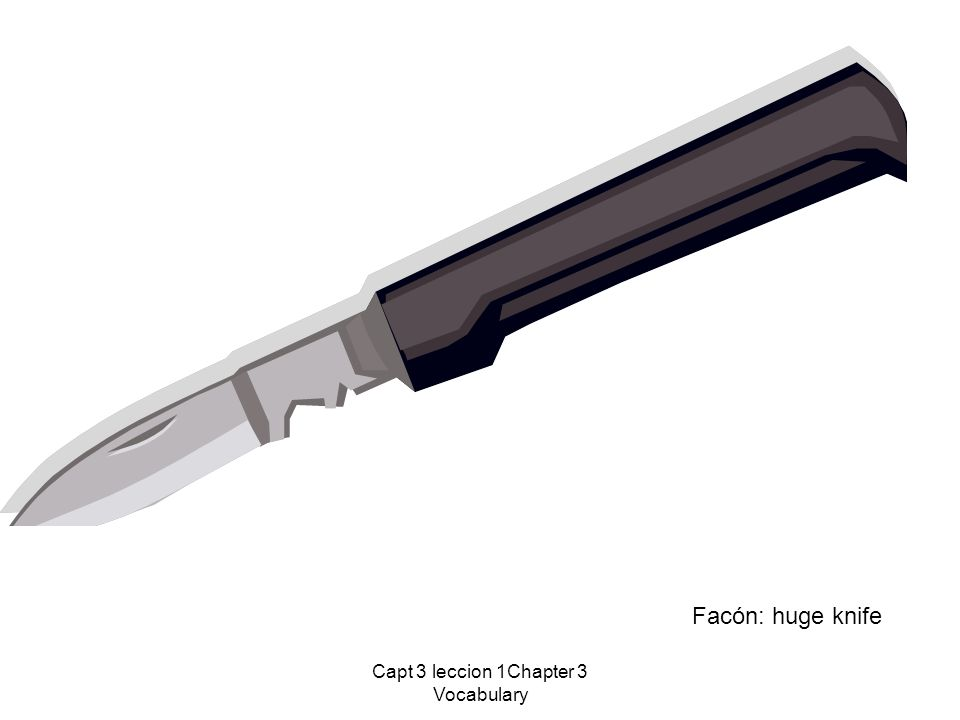 Capt 3 leccion 1Chapter 3 Vocabulary Facón: huge knife