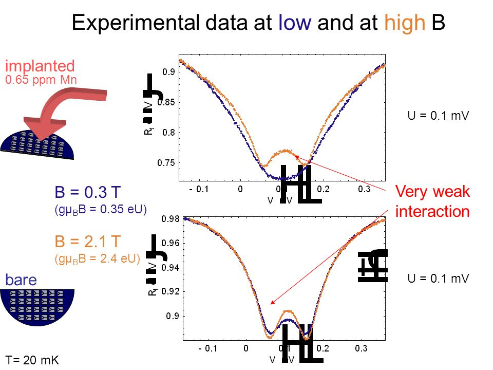 B = 0.3 T (gµ B B = 0.35 eU) B = 2.1 T (gµ B B = 2.4 eU) Very weak interaction Experimental data at low and at high B implanted 0.65 ppm Mn bare U = 0