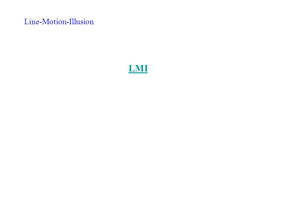 Line-Motion-Illusion LMI