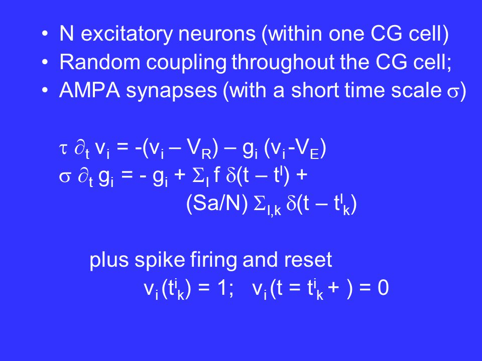 N excitatory neurons (within one CG cell) Random coupling throughout the CG cell; AMPA synapses (with time scale  )   t v i = -(v – V R ) – g i (v-V E )   t g i = - g i +  l f  (t – t l ) + (Sa/N)  l,k  (t – t l k )  (g,v,t)  N -1  i=1,N E{  [v – v i (t)]  [g – g i (t)]}, Expectation E over Poisson spike train { t l }