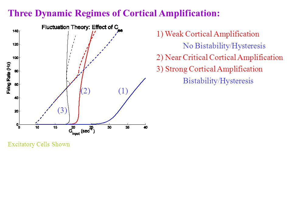 Three Dynamic Regimes of Cortical Amplification: 1) Weak Cortical Amplification No Bistability/Hysteresis 2) Near Critical Cortical Amplification 3) Strong Cortical Amplification Bistability/Hysteresis (2) (1) (3) Excitatory Cells Shown
