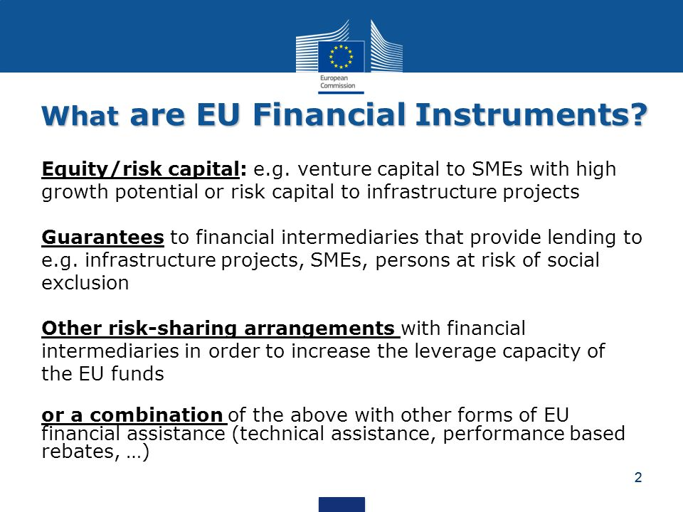 2 What are EU Financial Instruments.Equity/risk capital: e.g.